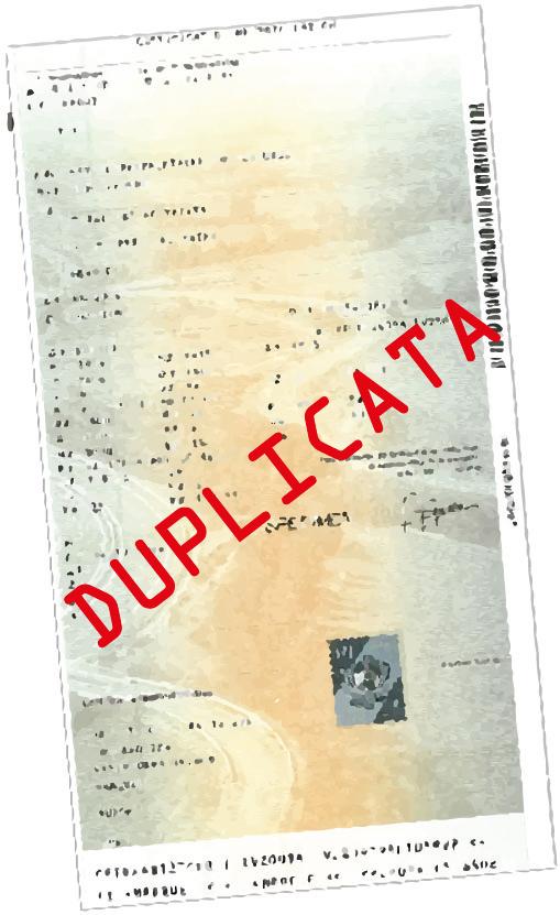carte_grise_duplicata
